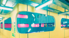 Admire This Color Palette At Pierre and Marie Curie University, in Paris