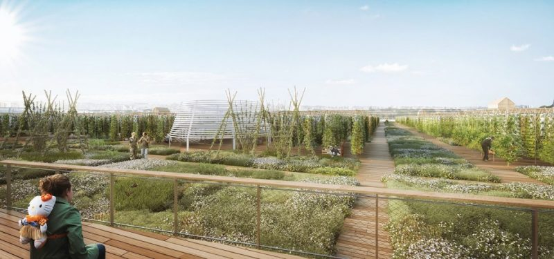 valode and pistre Valode And Pistre Will Create The World's Largest Farm In Paris Valode And Pistre Will Create The Worlds Largest Farm In Paris 2 e1571759650261