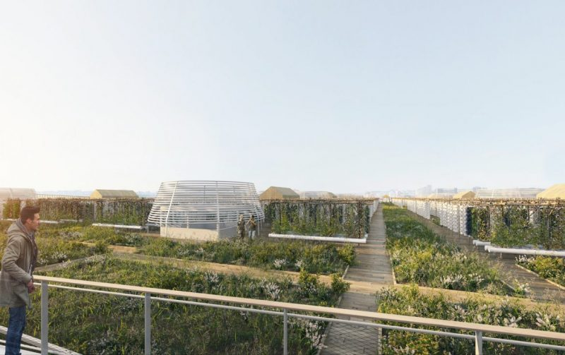 valode and pistre Valode And Pistre Will Create The World's Largest Farm In Paris Valode And Pistre Will Create The Worlds Largest Farm In Paris 3 e1571758315298